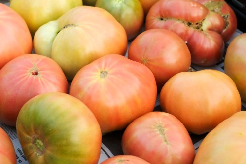 Heirloom tomatoes at Boggy Creek Farm